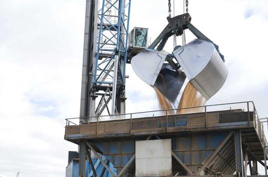 La caída de la cosecha de cereales augura un año récord de importaciones en el Puerto