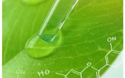 El 63% de todo el movimiento del Puerto en 2018 tuvo su origen en las químicas