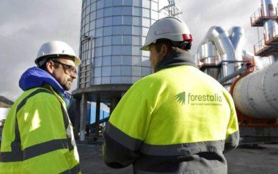 Forestalia estudia la opción del Puerto de Tarragona como vía de exportación de su producción de pellets