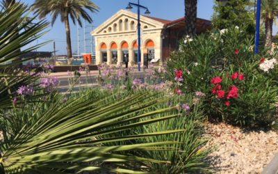 El Port de Tarragona planta nuevas zonas verdes para conseguir absorber hasta 1.405,18 toneladas de CO2 al año