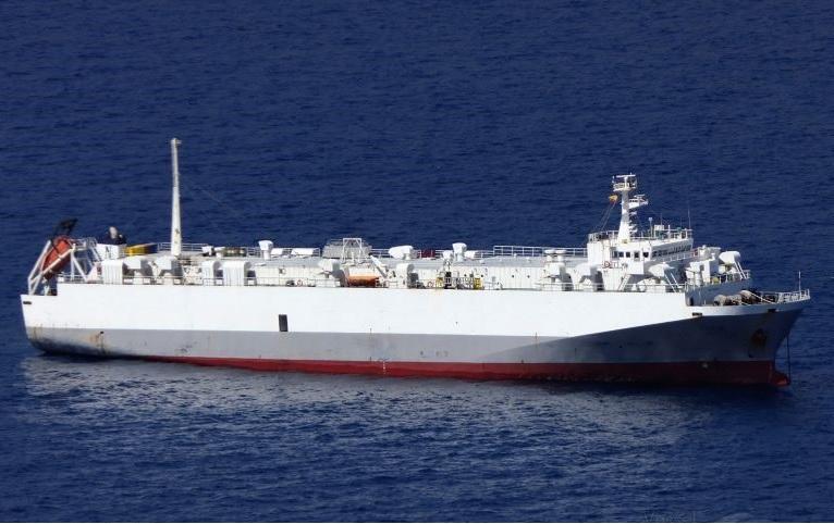 El Puerto recupera las exportación de ganado a Egipto después de casi tres años de parón