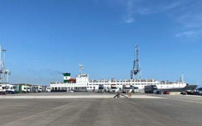 El Puerto registra una de sus mayores operativas de ganado
