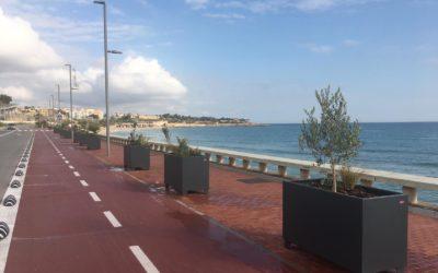 El Port crea más espacio verde en el Passeig Marítim del Miracle